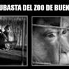 Pedimos ayuda para impedir la subasta del zoo de Buenos Aires