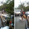 Un perro agarra la mano de su familiar antes de cruzar una calle