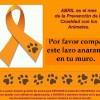 Abril es el mes de la Prevencin de la Crueldad con los Animales