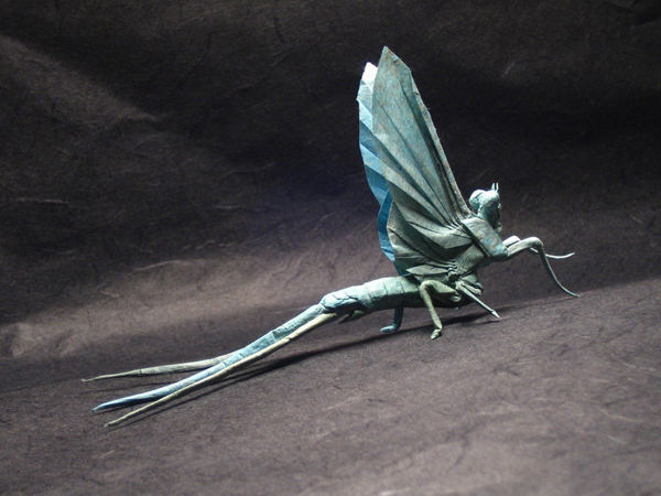 mayfly papel