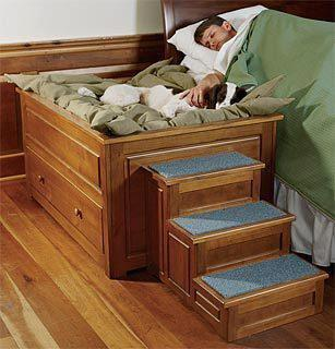Bed designs can be creative and very original shelves and drawers - Cama Para Perros Schnauzi Com