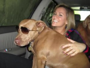 pit bull lilly con gafas