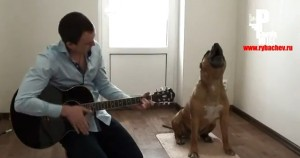 Un hombre y un perro forman un grupo de blues