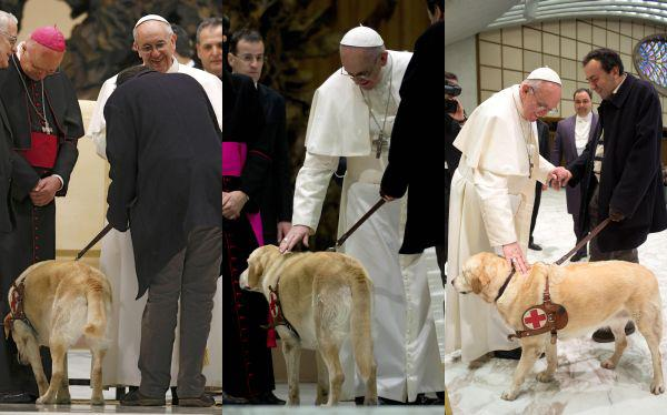 Pope blesses dog francisco