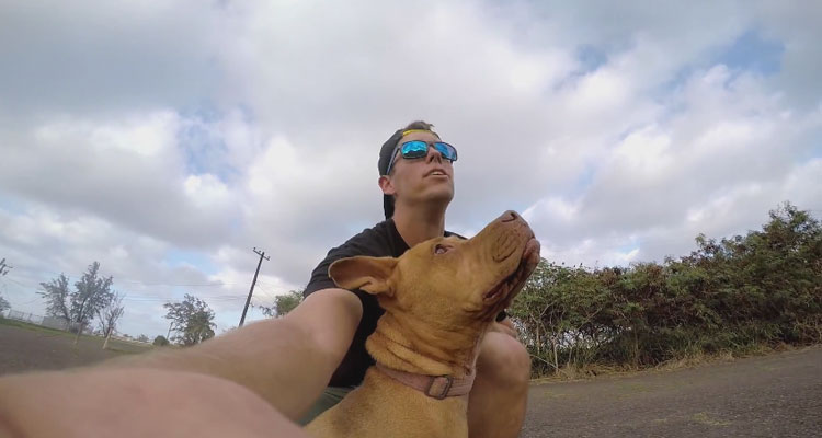 perro-hace-Speed-flying