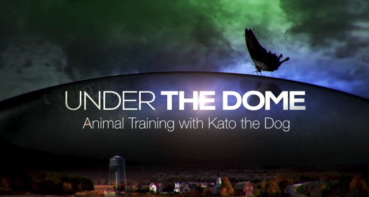 serie under the dome