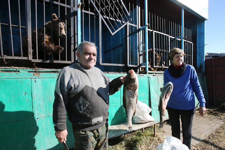 ancianos-ayudan-animales-zoo-armenia