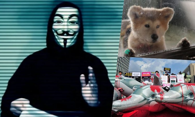 Anonymous Karma Sec zoo japon
