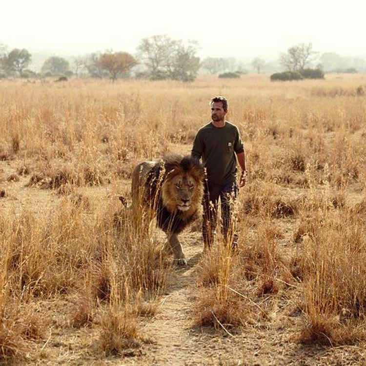 fotos leones kevin richardson