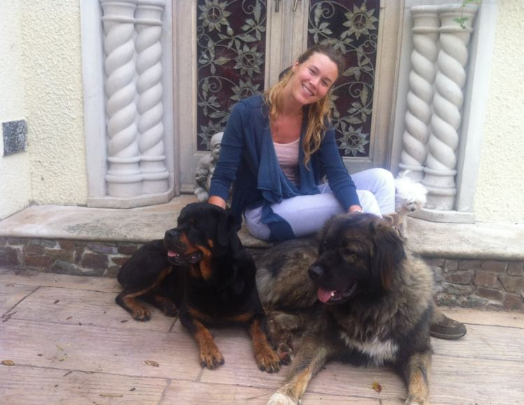 perros cantante Joss Stone