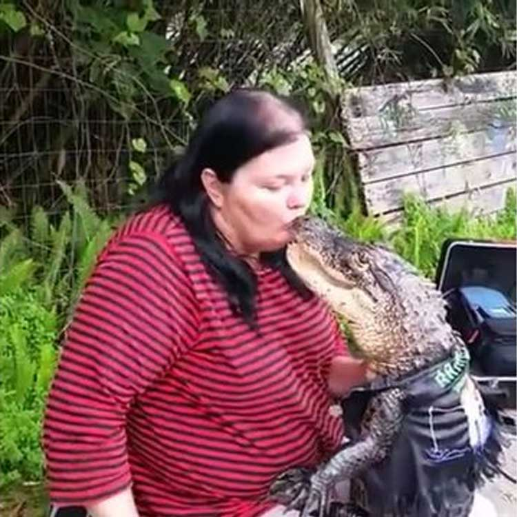 Mary-Thorn-besa-alligator