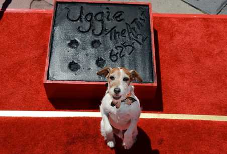 Uggie The Artist Teatro Chino