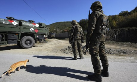 Kfor soldiersin Kosovo look on as a ginger cat runs by