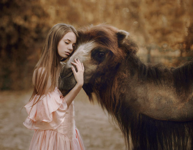 animales-salvajes-fotos-Katerina-Plotnikova