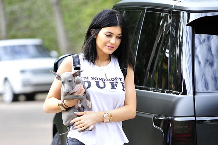 Kylie-Jenner-perro
