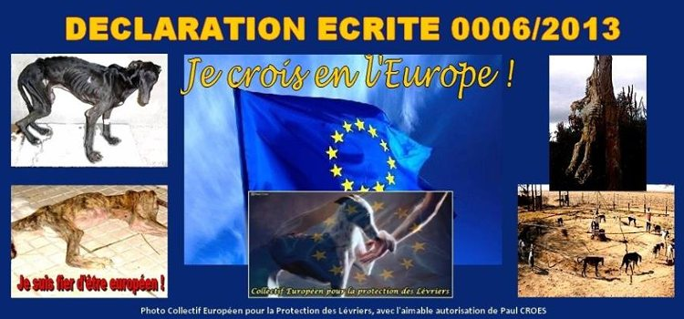 Galgos Ethique Europe