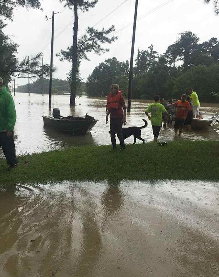 voluntarios rescatan animales inundaciones louisiana