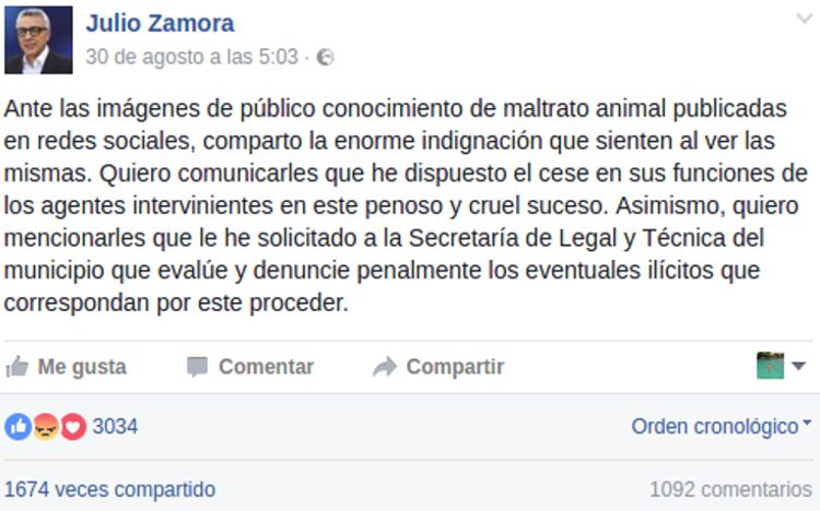 julio zamora pit bull peter buenos aires