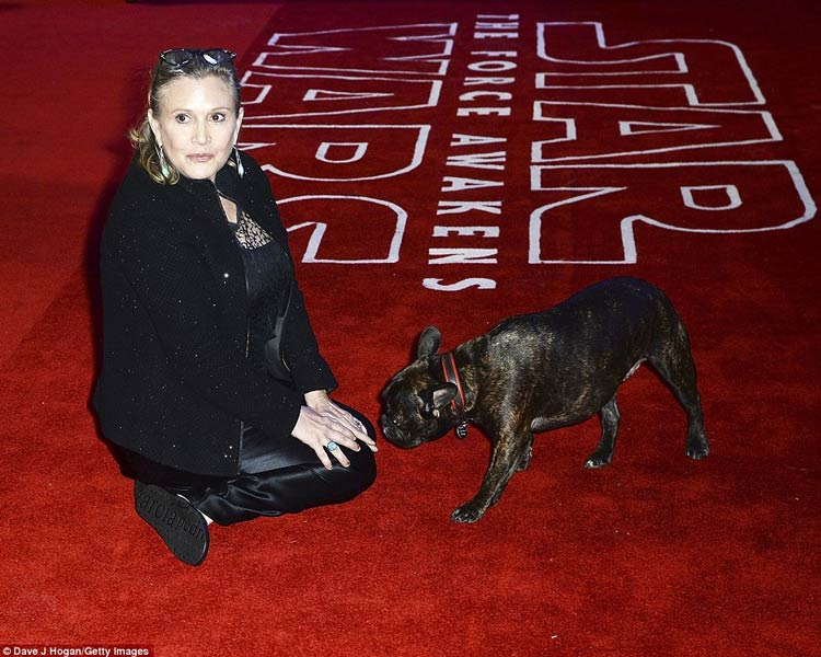 Carrie-Fisher-perro