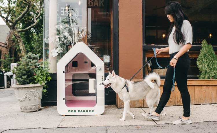 dog-parker-brooklyn