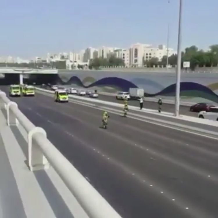 video bomberos dubai rescatan gato carretera