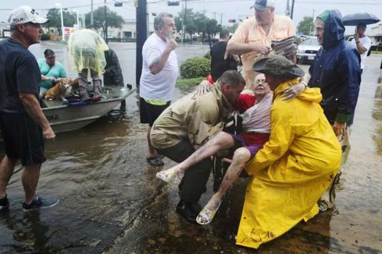 fotos personas salvando perros huracan harvey houston