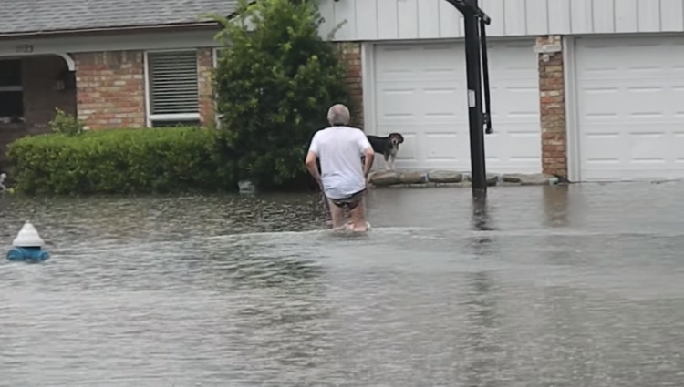 anciano rescata perro inundaciones houston