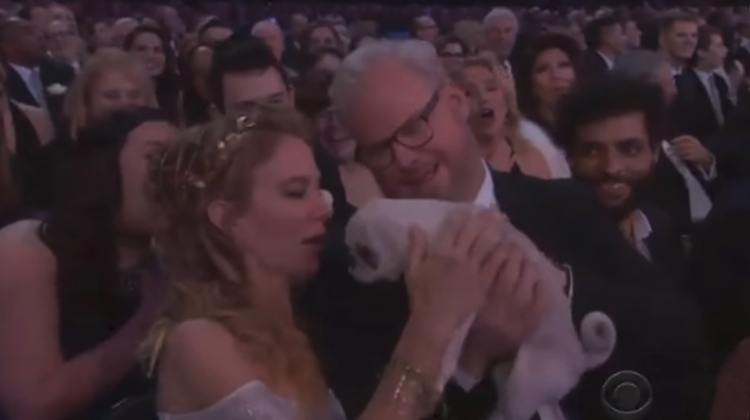 regalan cachorros ceremonia grammy