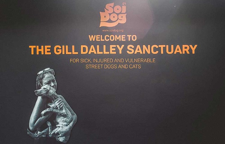 the gill dalley sanctuary