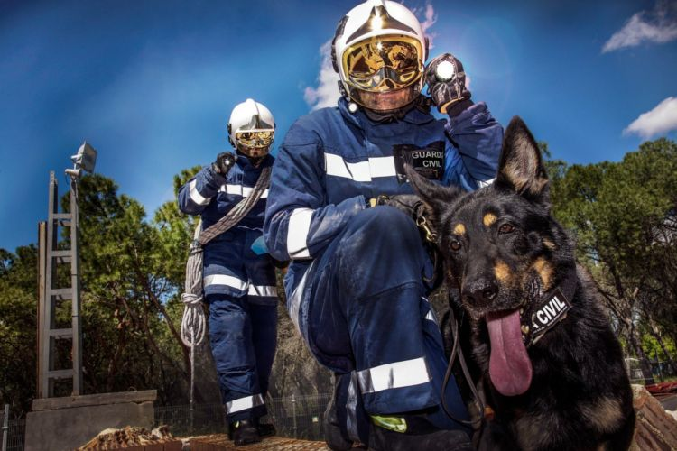 imprecionantes fotos perros guardia civil