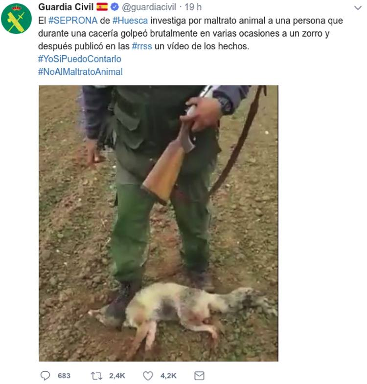 guardia civil busca hombre mato zorro video